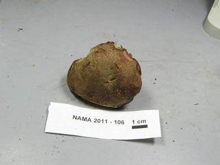 191018