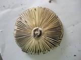 Russula rubescens image
