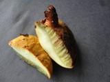Buchwaldoboletus lignicola image