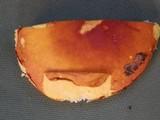Russula xantho image