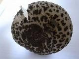 Amanita spissacea image