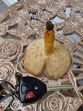 Russula foetentula image