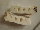 Russula albidula image