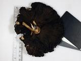 Agaricus reducibulbus image