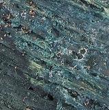 Chlorociboria aeruginascens image