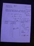 Lamprospora polytrichi image