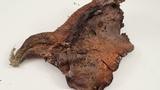 Sarcodon fuscoindicus image